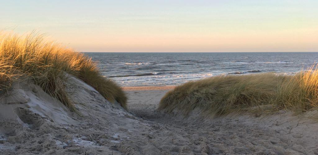 Blick von der Düne auf die Ostsee